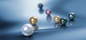 Schoeffel perle gioiellerie Gallarate Federici